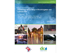 Read the Flood Prevention Task Force Final Report