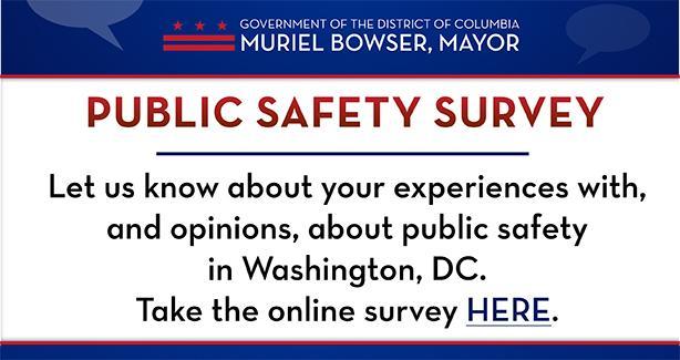 Public Safety Survey